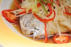 Steamed Fish with Soy Sauce Royalty Free Stock Photos