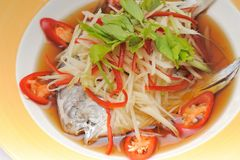 Steamed Fish with Soy Sauce Royalty Free Stock Image