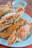 Steamed flower crab Royalty Free Stock Photography