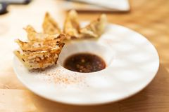 Steamed and fried pork gyoza Royalty Free Stock Photos