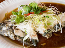 Steamed goby fish with soy sauce Royalty Free Stock Images