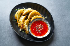 Steamed gyozas teriyaki sauce and sesame Royalty Free Stock Photo