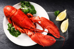Steamed lobster with lemon on white plate. Sea food background Stock Photos