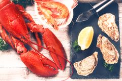 Steamed lobster, oysters and shrimps as fine selection of crustacean stock photography