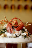 Steamed Lobster and seafood pl Stock Image