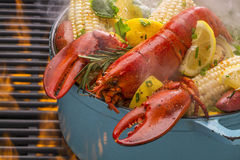 Steamed Lobster and Vegetables cooking over a barbecue grill Royalty Free Stock Photography