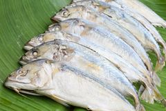 Steamed Mackerel Royalty Free Stock Image