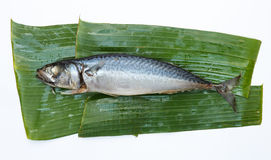 Steamed Mackerel. On banana leaf Stock Photography