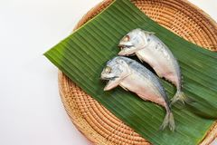 Steamed mackerel on banana leaves background. stock image