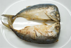 Steamed Mackerel fish Stock Images