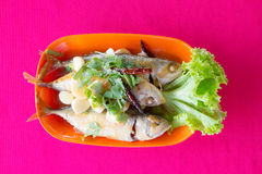 Steamed mackerel with sauce Stock Image