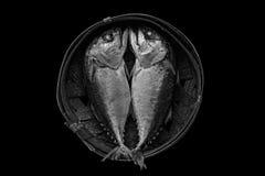 Steamed mackerel or tuna steamed Royalty Free Stock Photos