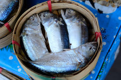 Steamed Mackerels Stock Photography