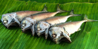 Steamed mackerels. Steamed mackerel on banana leaves ready to be cooked Royalty Free Stock Photos