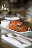 Steamed Maine Lobster Stock Photography