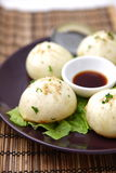 Steamed meat dumpling Royalty Free Stock Photos