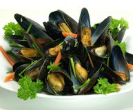 Steamed mussels Royalty Free Stock Image