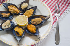 Steamed mussels. On checkered tablecloth Stock Photos