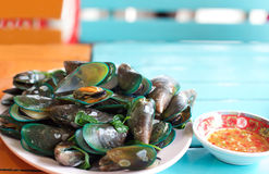 Steamed mussels with chilli sauce Stock Images