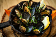 Steamed mussels with dressing Stock Image