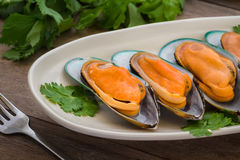 Steamed mussels with parsley on plate Stock Image