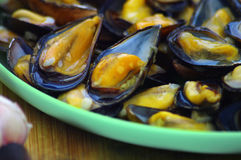 Steamed mussels on the plate Royalty Free Stock Images