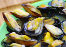 Steamed mussels on the plate Royalty Free Stock Image