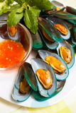 Steamed mussels and spicy sauce. Stock Image