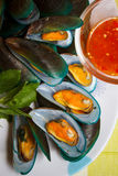 Steamed mussels and spicy sauce. Royalty Free Stock Image