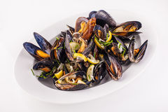 Steamed Mussels. On a white isolated background Stock Image