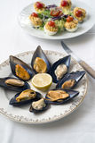 Steamed mussels Stock Image