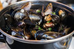Steamed mussels in white wine and butter sauce. At small cafe royalty free stock image