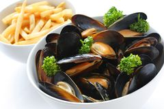 Steamed mussels with white wine, and french fries Stock Image