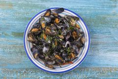 Steamed mussels in white wine with herbs ,Seafood. Served in white plate, up view on blue wooden background Stock Image