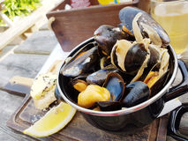 Steamed mussels in white wine sauce Stock Photo