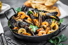 Steamed mussels in white wine sauce on dark table royalty free stock images