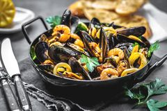Steamed mussels in white wine sauce royalty free stock photos
