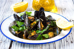 Steamed mussels in wine sauce Stock Images