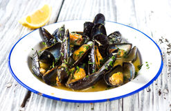 Steamed mussels in wine sauce royalty free stock images