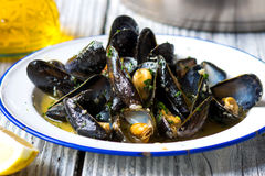 Steamed mussels in wine sauce Royalty Free Stock Image