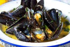 Steamed mussels in wine sauce Stock Image