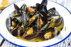 Steamed mussels in wine sauce Stock Photos