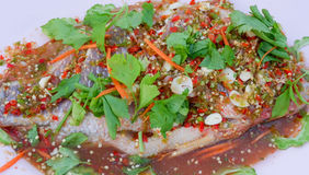 Steamed Nile tiapia fish. Steamed fish spicy salad with Vegetables Celery  Thai food Royalty Free Stock Photos