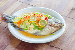 Steamed Nilotica fish,thai style steamed fish in spicy sauce Stock Image