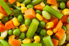 Steamed Organic Vegetable Medly Royalty Free Stock Photos