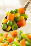 Steamed Organic Vegetable Medly Stock Photos