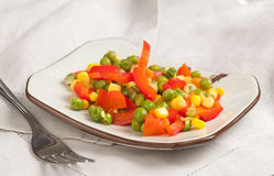 Steamed Organic Vegetables Stock Images