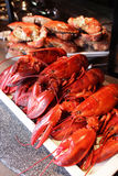 Steamed red lobsters and crabs on white plate in restaurant Royalty Free Stock Photography