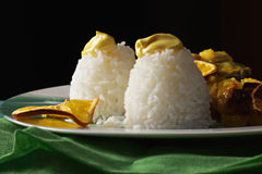 Steamed rice Stock Images