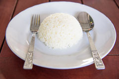Steamed rice dish Royalty Free Stock Images